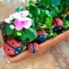 Stone Ladybug Garden Ornaments - ladybug rocks in a planter