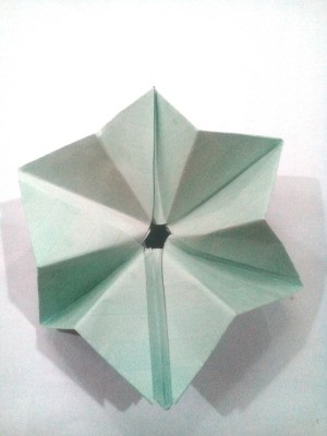 Folded Paper Star - folded paper star