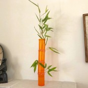 Medicine Bottle Bamboo Vase - vase with a bamboo stalk and several stalks taped to the back