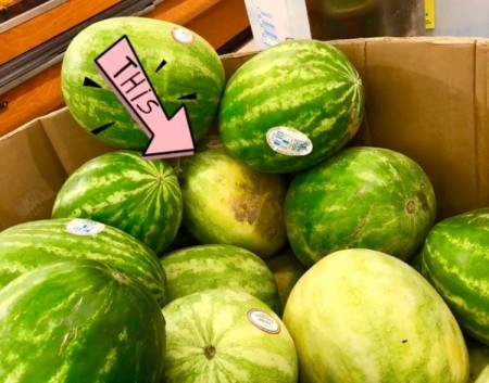 A box of watermelon for sale with an arrow marking the one that was chosen.