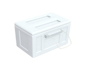 Styrofoam Ice Chest