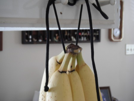 Bananas hanging from a shoe string in the kitchen.
