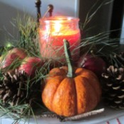 Using Natures Own For Decorations, While Going Green - mini pumpkin gourd, pinecones, apples, greenery and a candle