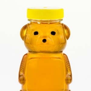 Closeup of a Honey Bear.