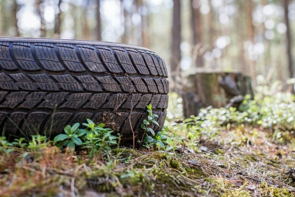 Tire On The Ground Outside Near Trees
