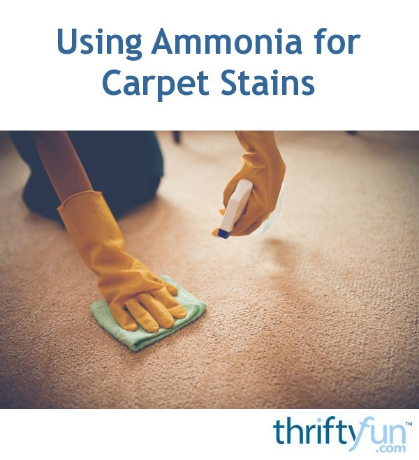 Using Ammonia For Carpet Stains Thriftyfun
