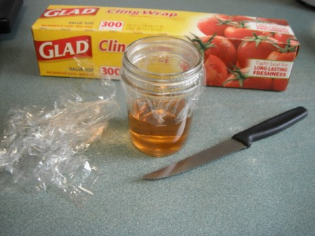 Making a Gnat Trap - ready to cover with cling wrap