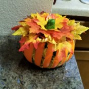 Not Country Bumpkin - Country Pumpkin! - decorated pumpkin