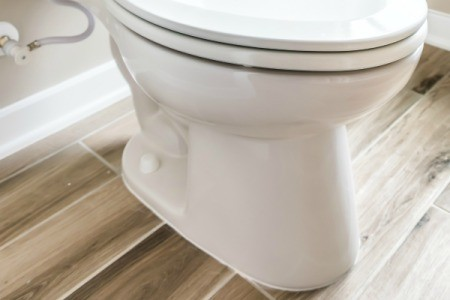 Toilet bolt cover.
