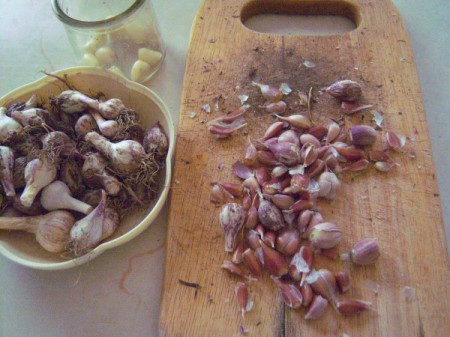 A cutting board full of very small garlic cloves.