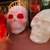 Milk Jug Skulls - two skulls, one with red flowers in the eye sockets