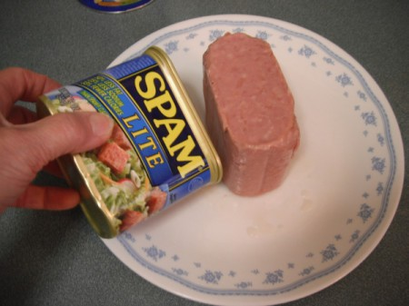 Spam out of can on plate