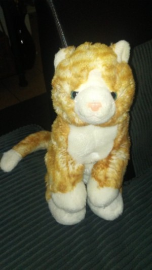 Identifying A Stuffed Kitty Thriftyfun