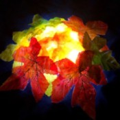 Autumn Leaves Centerpiece - flipped over with an LED light underneath