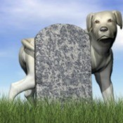 tombstone and dog