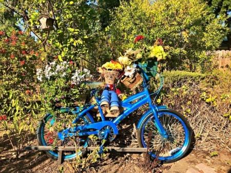 Make a Bicycle Planter - blue bike