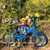 Make a Bicycle Planter - blue bike
