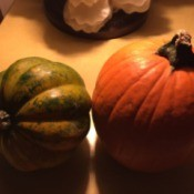 Cooking Leftover Pumpkin and Squash Decorations