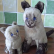Identifying a Stuffed Toy - stuffed toy Siamese cats