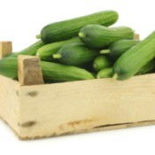 wooden crate piled with fresh cucumbers