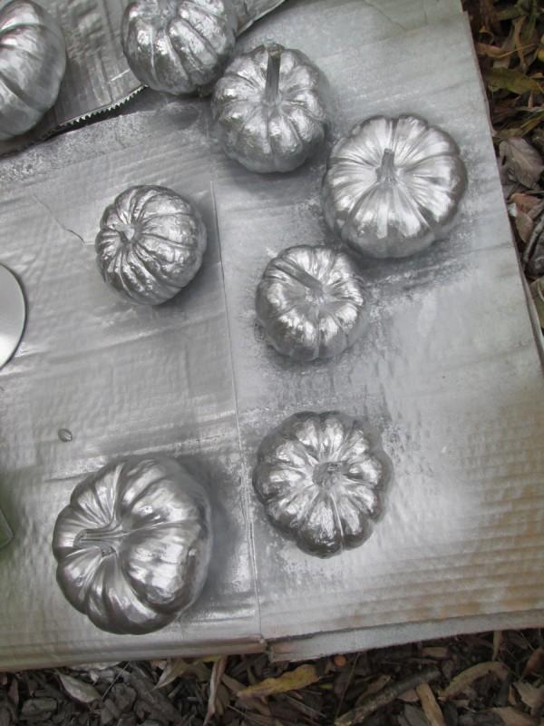 Transforming Gourds Into Elegant Decor - gourds spray painted silver