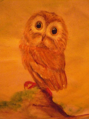 A drawing of an owl.