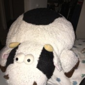 Identifying a Stuffed Cow - black and white terry cloth stuffed cow