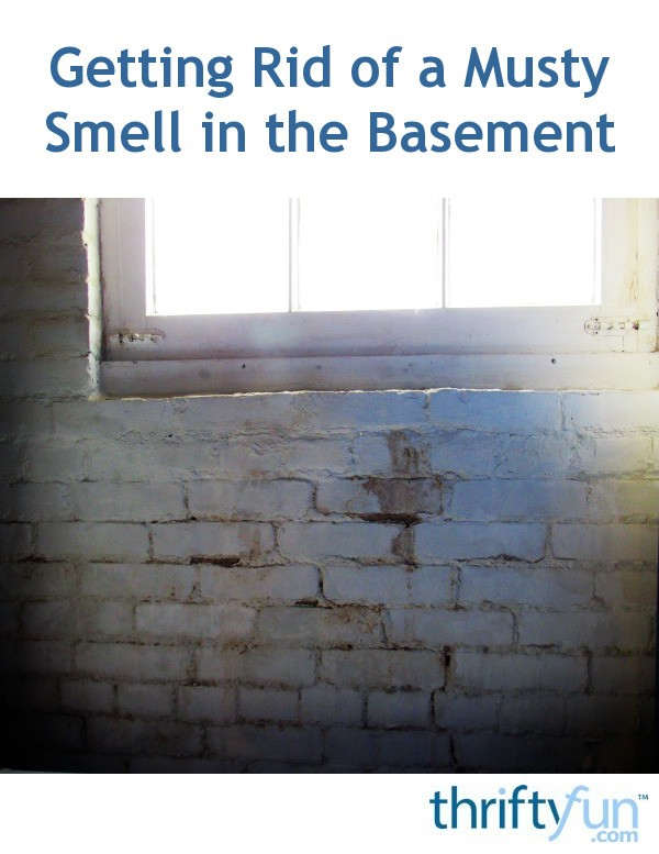 Getting Rid of a Musty Smell in the Basement   ThriftyFun