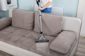 Shampooing a sofa.