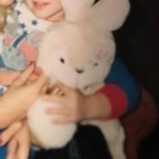 Identifying a Stuffed Bunny
