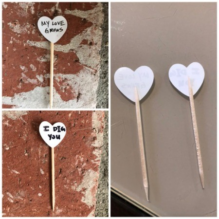 Valentine's Day Plant Stake - attach to toothpicks