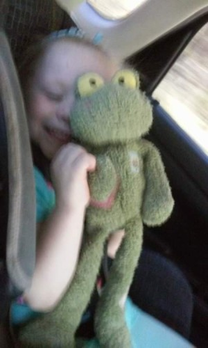 Identifying a Stuffed Frog