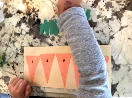 Carrot Counting Activity for Toddlers - ready to play