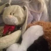 Identifying a Stuffed Bunny - ecru bunny