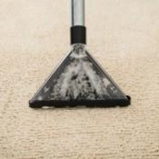 Carpet being shampooed.