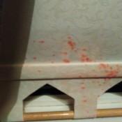 Removing Spray Ink on Roller Blinds - red ink on window blind
