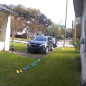 A line of dog poop bags left in a yard.