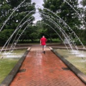 Daniel Stowe Botanical Gardens - fountains