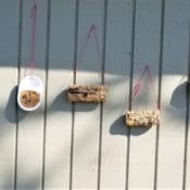 Bird Feeders Part 2 - hanging feeders