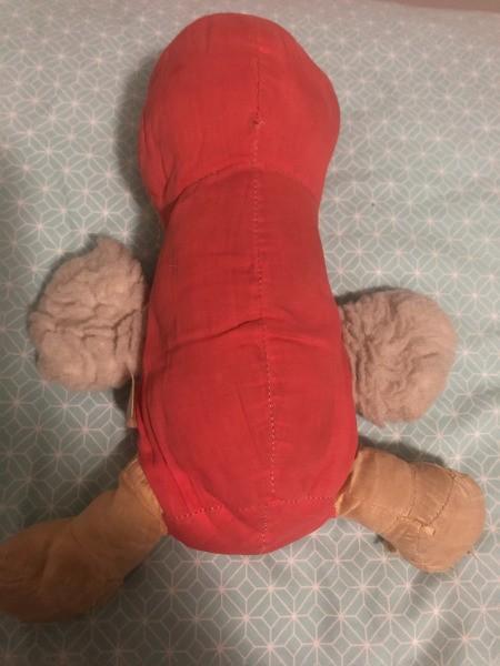 Identifying a Stuffed Toy