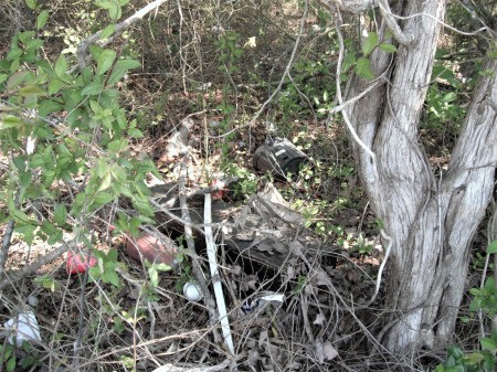 Make a Difference By Picking Up Trash - trash in wooded area
