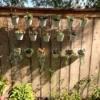 Thrifty Vertical Planter Wall - asymmetrical arrangement