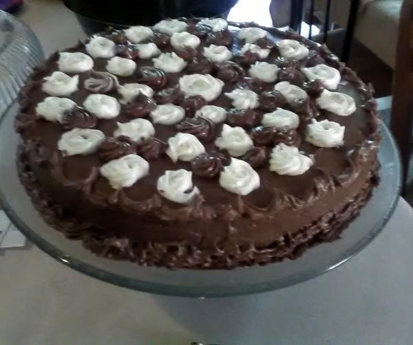 A single layer chocolate cake