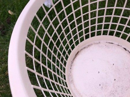 Making a Strawberry Planter from a Laundry Basket - punch holes in the bottom of the basket