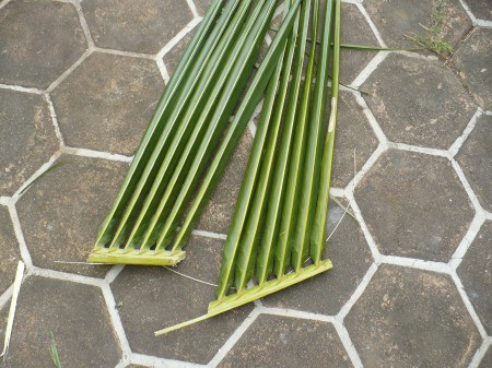 Weaving Coconut Leaf Plates - cut into 4 sections