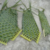 Weaving Coconut Leaf Plates - three plates of differing sizes