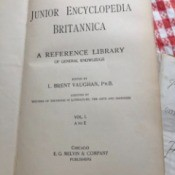 Value of Junior Encyclopedia Brittanica 1897 - cover page