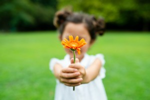 A child holding a flower out to the viewer.