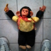 Identifying Mr. Bim Monkey Stuffed Toys - stuffed toy on tile floor