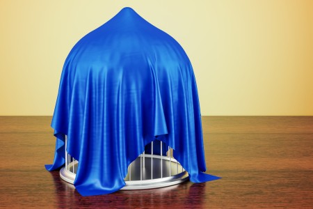 cage covered with a blue cloth